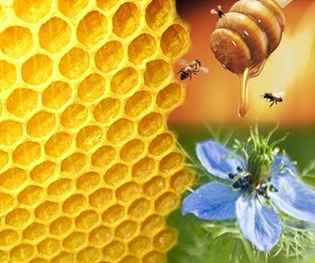 Honey as a Home Remedy for Bladder Infection