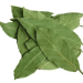 Bay Leaves for Diarrhea