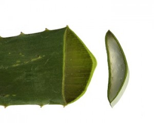 Aloe Vera for Diabetes